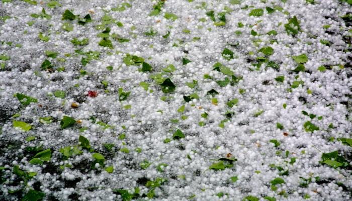Hailstorm Damage