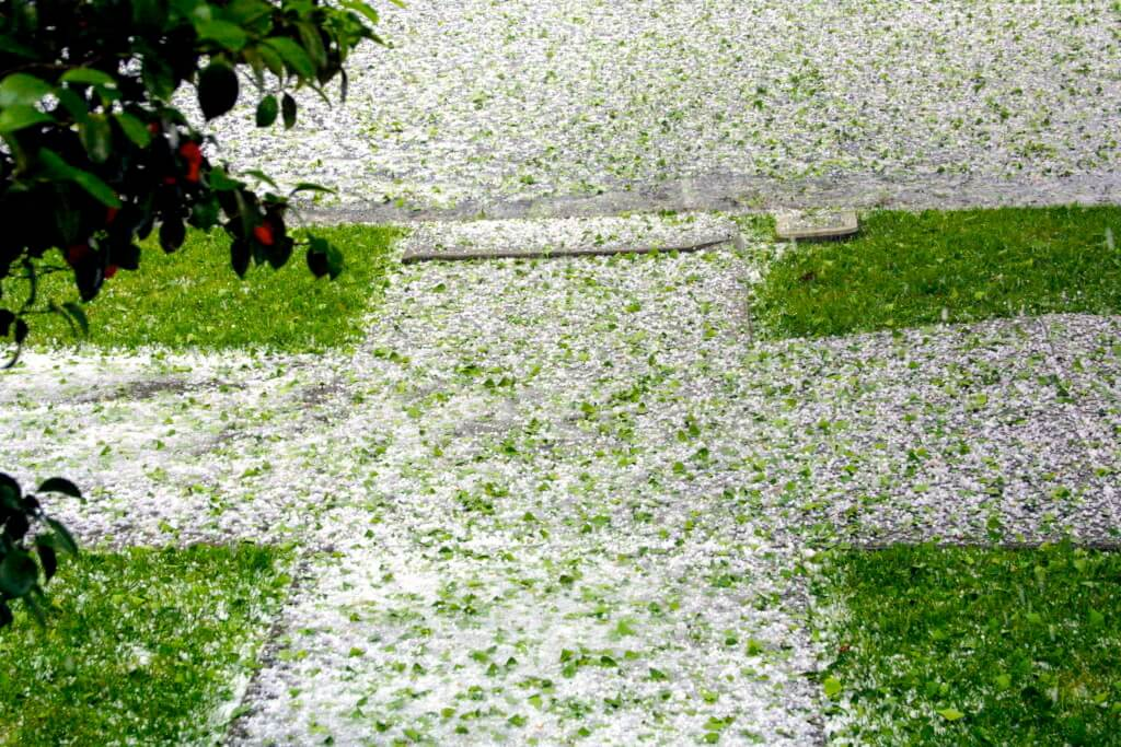 wind and hailstorm