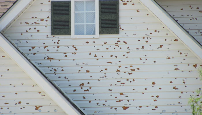 residential property damage