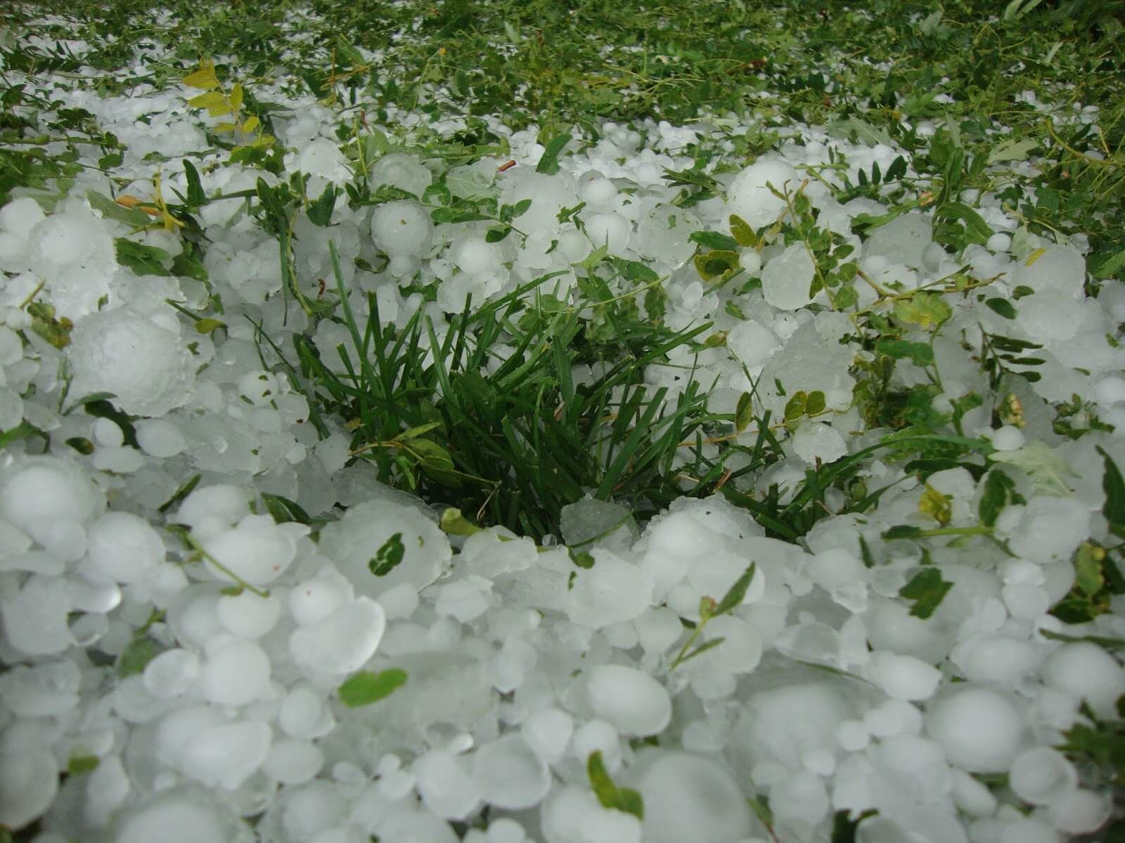 Bexar County Commercial Hail Damage Lawsuit