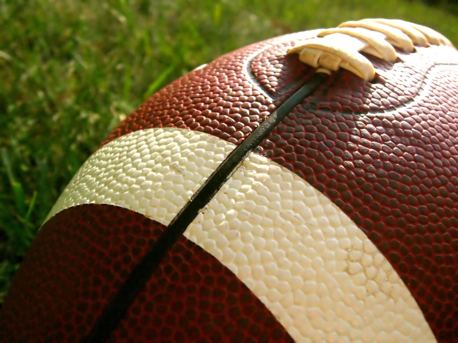 Former Idaho Student Files NCAA Concussion Injury Suit