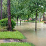 Flood Buyouts