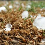 Hail Damage Insurance Lawsuit