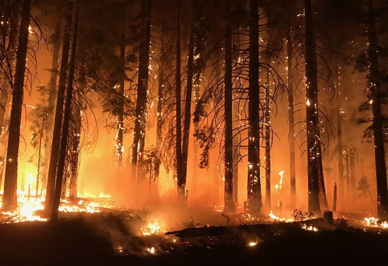 Wildfires Bring Changes In Fire Insurance