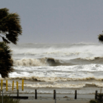 Hurricane Insurance Industry