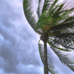 Tropical Storm vs Hurricane