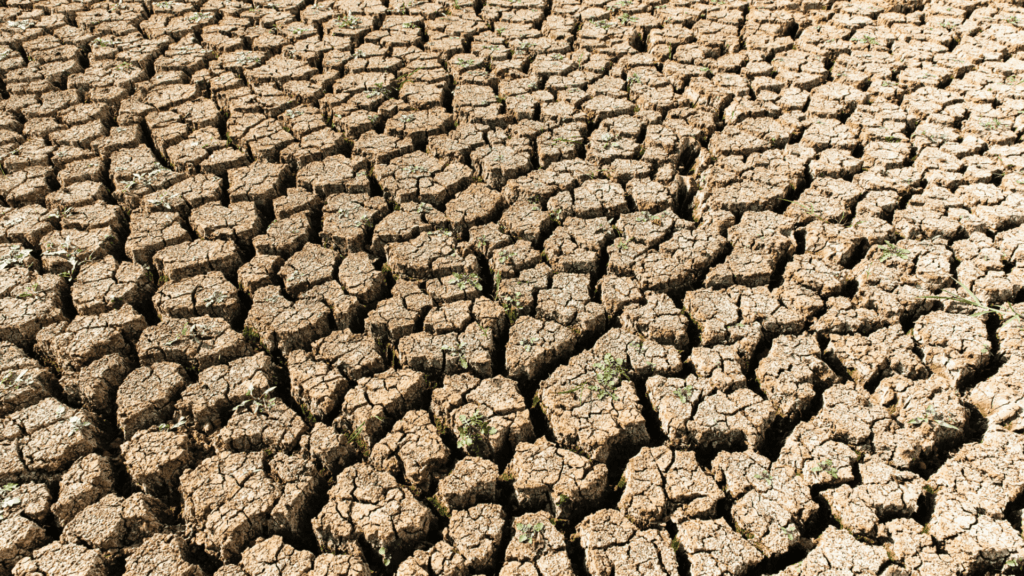 How a Drought Can Damage Commercial Properties